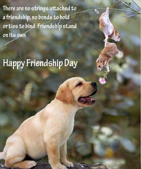 friendship-day-for-facebook-wall