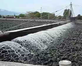 wastewater trickling filter system