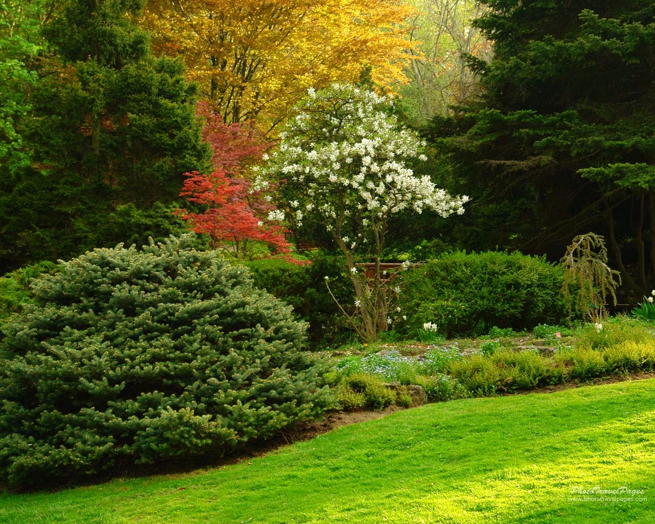 Garden wallpapers full hd wallpaper pic gallery for Beautiful garden images hd