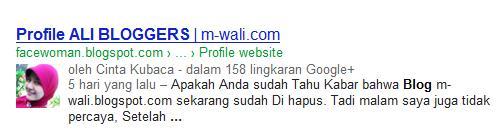 Profile Ali Bloggers | m-wali.com