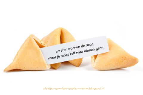 wijze spreuken en mooie teksten voor fortune cookies