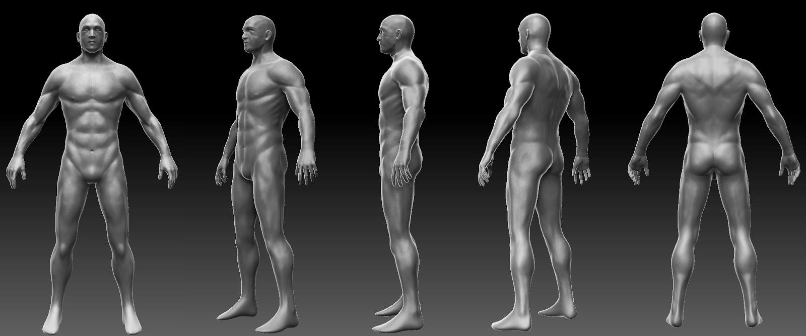 3d Digital Sculpture Final Human Anatomy Sculpt Render