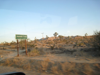 Joshua Tree Road Sign