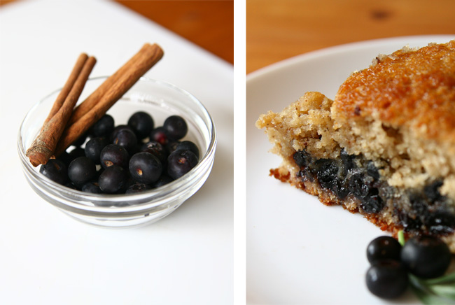 oinge: Test Kitchen - Cinnamon-Spiced Blueberry Cake