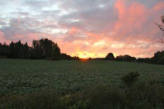 photo of Summer sunrise