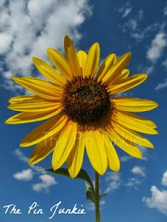 http://www.thepinjunkie.com/2013/08/sunflowers.html