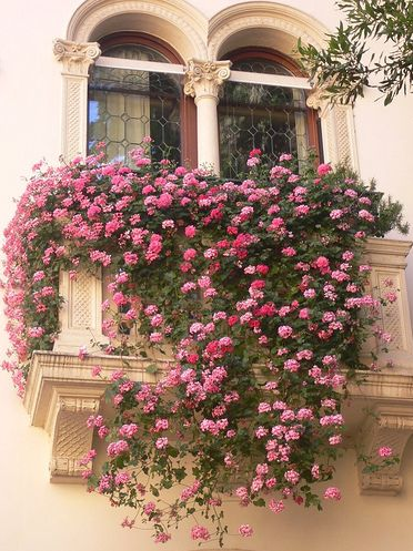 Romantic and Beautiful Balcony