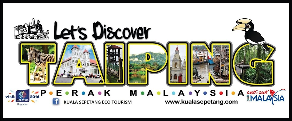 KUALA SEPETANG ECO TOURISM Matang Mangrove Forest Reserve Tour, Bird Watch, Fireflies Sighting