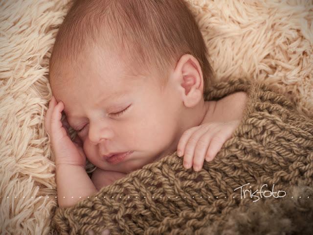 reportaje fotos recién nacido, especialistas fotografia recién nacido alicante