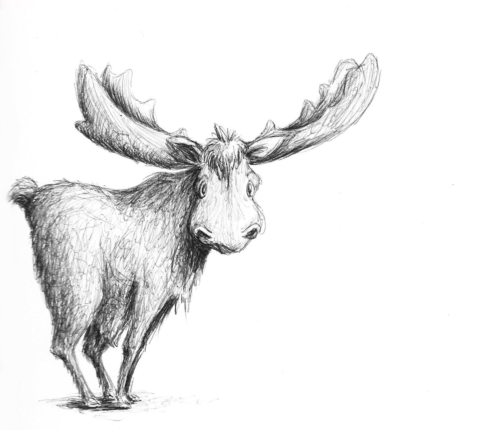 Pencil Of Moose Sketch Templates