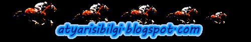 At Yarışı Tahminleri - Altılı Ganyan Tahminleri