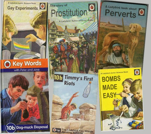 Classic Book Cover Up : The could ladybird bring first parody