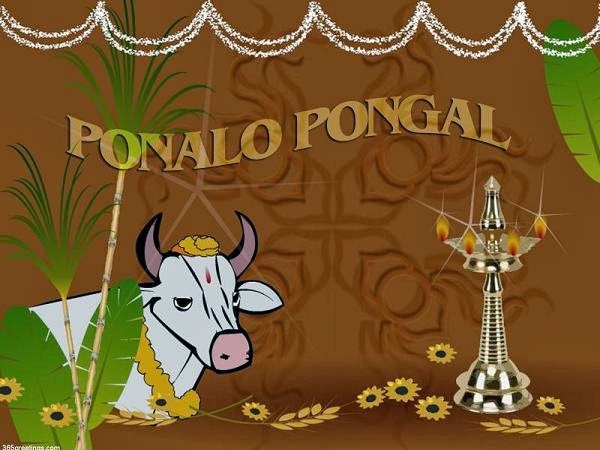Happy Pongal 2014 Sms Text Message Wishes Quotes in English Tamil Festival gif animated Images HD wallpapers pictures and Greetings.