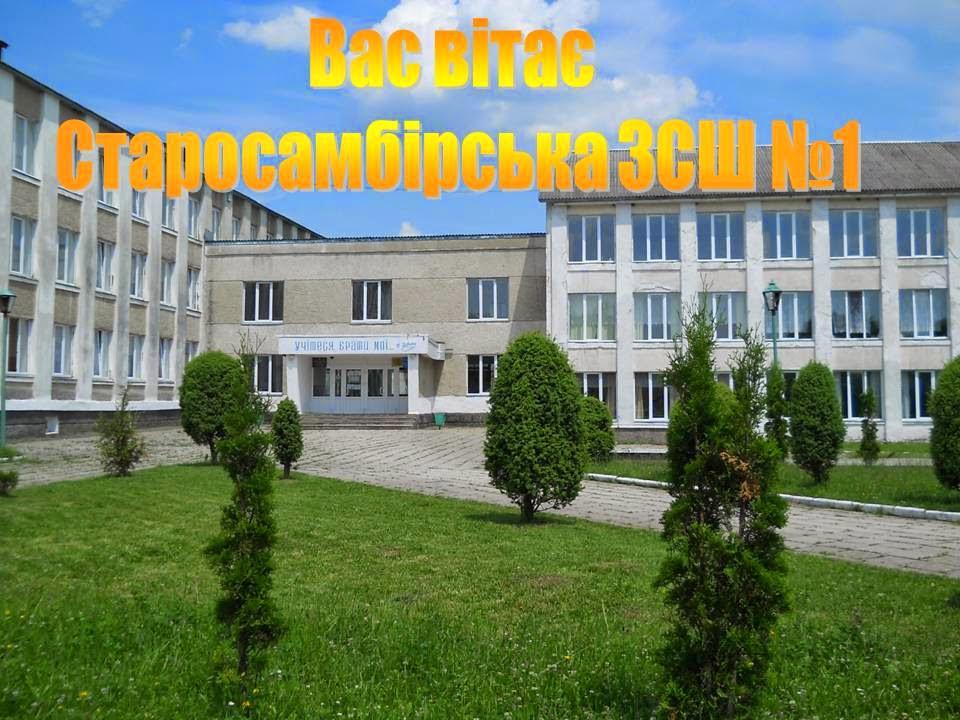 Школу імені Богдана Сольчаника у Старому Самборі відремонтує фірма, яка запропонувала на тендері найдорожчу пропозицію