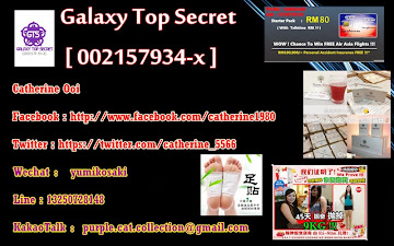 Galaxy Top Secret 银の家