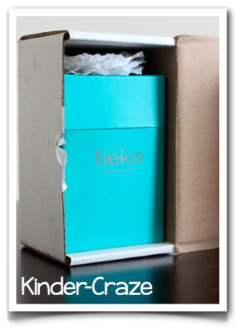 Tieks shoe packaging