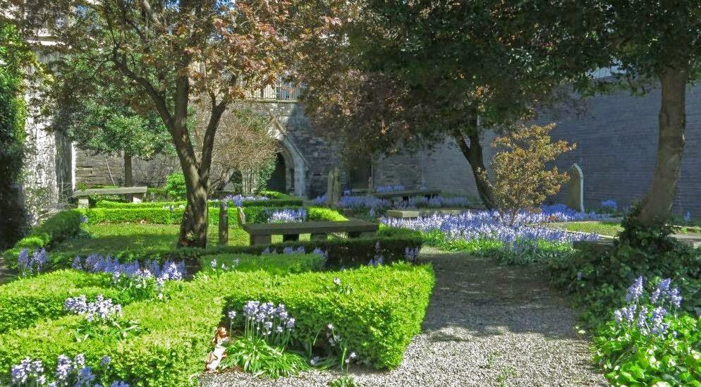 Bildergebnis für Hugenotten in Dublin / Friedhof