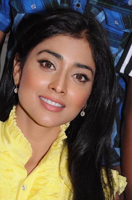 Shriya Saran Yellow Dress Stills