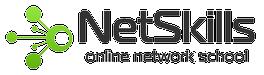 NetSkills