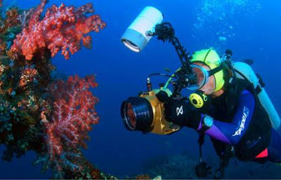 Diving in Bali, snorkeling in Bali, diving sites in bali