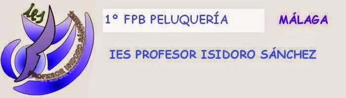 1º FPB ISIDORO SÁNCHEZ