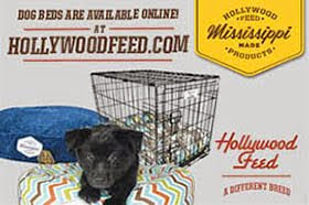 Hollywood Feed: MS Made