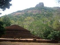 Discover Sri Lanka- Kaludiya Pokuna in Kandalama
