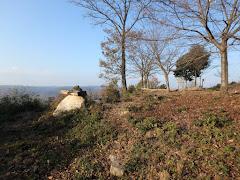 伽藍山城(岡山県矢掛町江良・伽藍山)