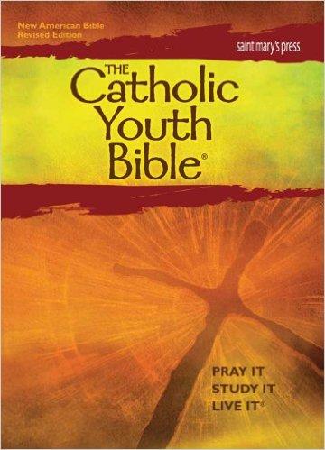 Teen Bible Studies DVDs Guides - Christianbookcom
