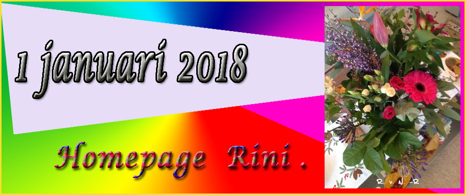 Rini's Thuispagina
