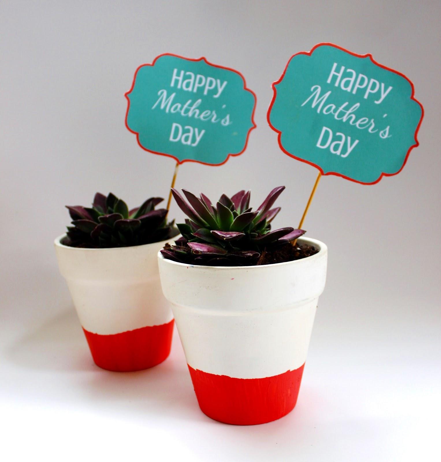 diy-dip-dye-garden-pots
