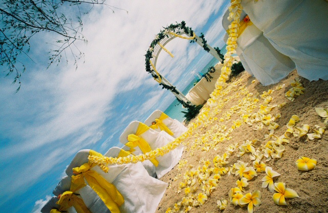 Most all inclusive resorts and resorts will offer a wedding decoration