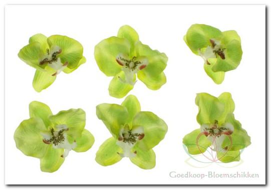 aangeboden door http  www goedkoop bloemschikken nl op http