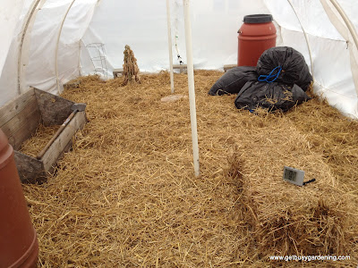 Layer of straw as weed barrier