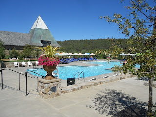coppola winery swimming pool
