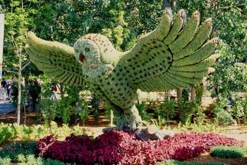 My owl barn montreal botanical garden mosaiculture - Arbustos para jardin ...
