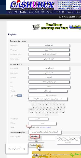 الشركة المصرية الصادقة cashubux ptc2.png