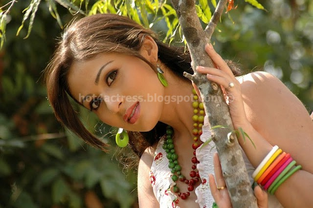 Actress sada hot photo gallery