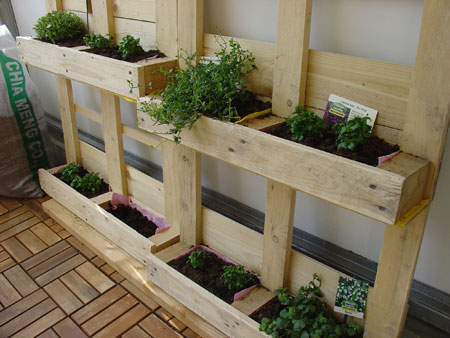 suttnerblog kostrom klimaschutz urban gardening f r florale hochstapler wir bauen uns. Black Bedroom Furniture Sets. Home Design Ideas