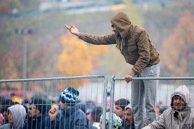 Ausztria, határkerítés, migráció, illegális bevándorlás, Werner Faymann, osztrák-szlovén határ,