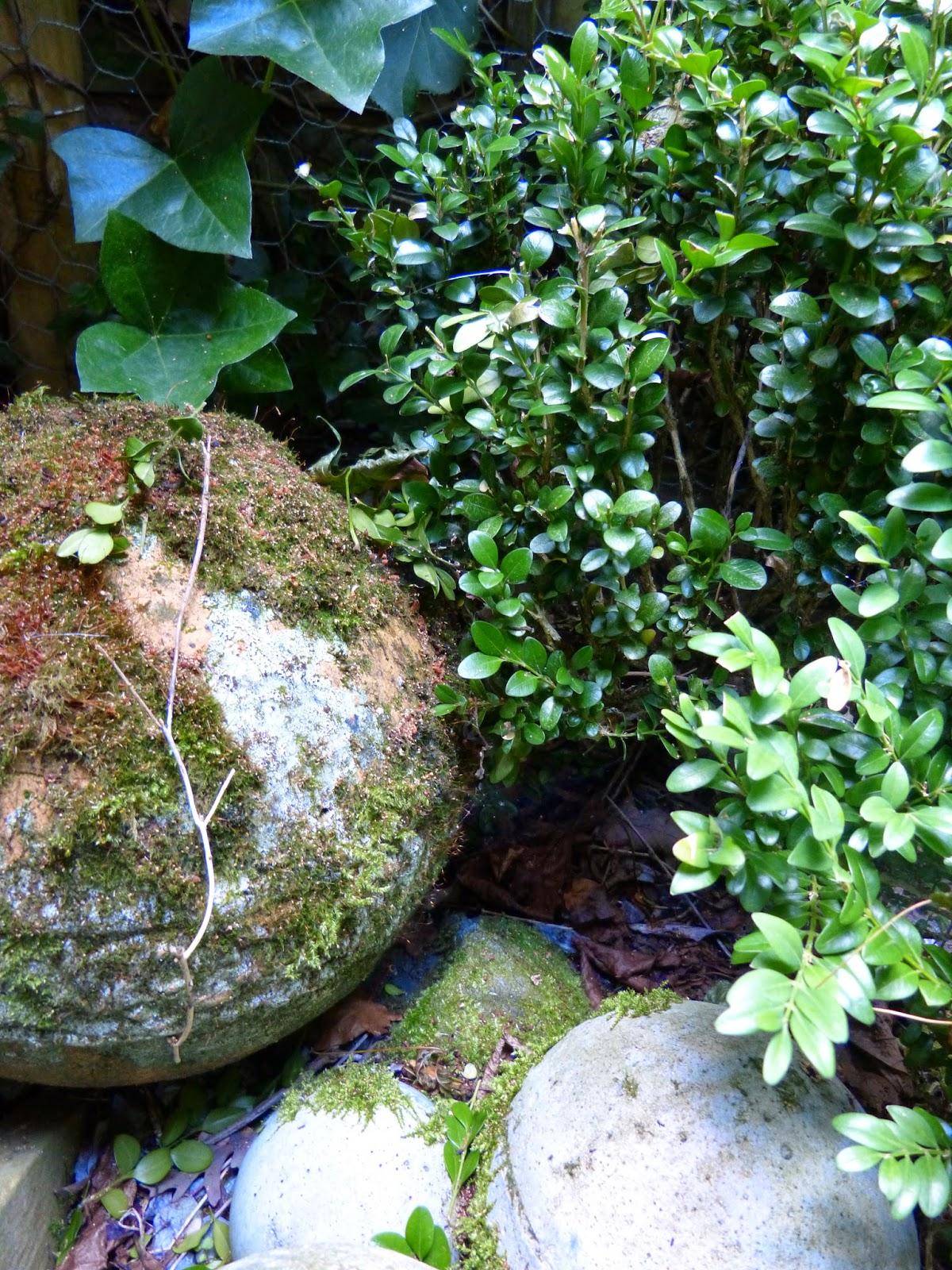 Eenvoud & simplicity: de tuin