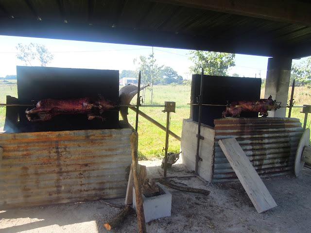fire pig roast