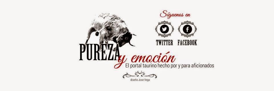 purezayemocion.com