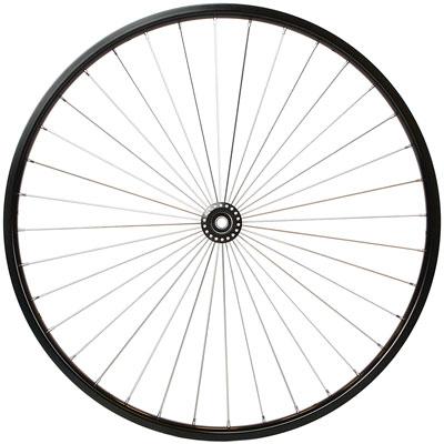 sanjex-radial-spokes.jpg