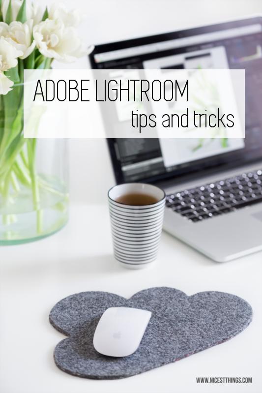 Bildbearbeitung in Lightroom: Tipps und Tricks - Nicest Things