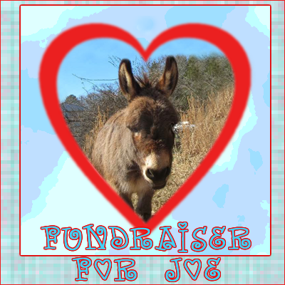 Joe the Donkey needs our help