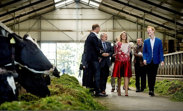 Queen Maxima Visited Cheese Factory And Farm In Friesland