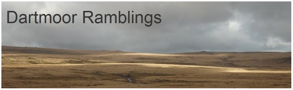 Dartmoor Ramblings