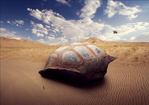 Sci-Fi Giant Tortoise Shelter Photo-Manipulation
