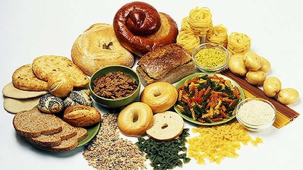 Role of Protein and Carbohydrates